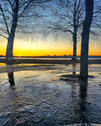 Sunset at lake with trees and frozen ground, Kempenfelt Bay